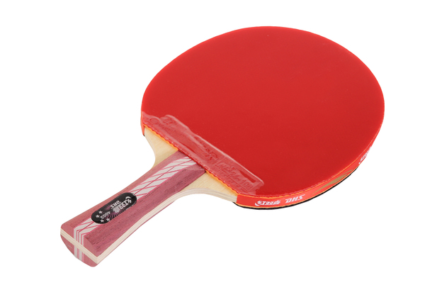 Ракетка для настольного тенниса DHS R4002