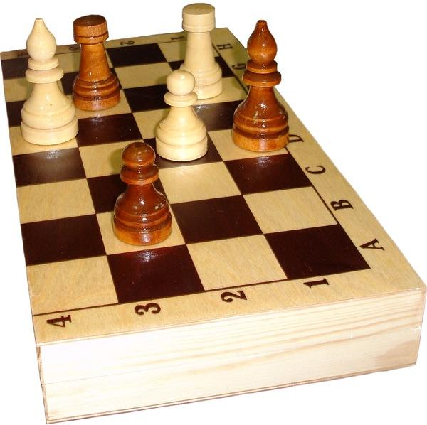 Шахматы турнирные лакированные с доской