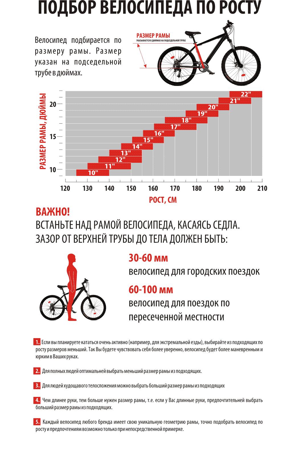 Как выбрать велосипед для мужчины по размеру колес