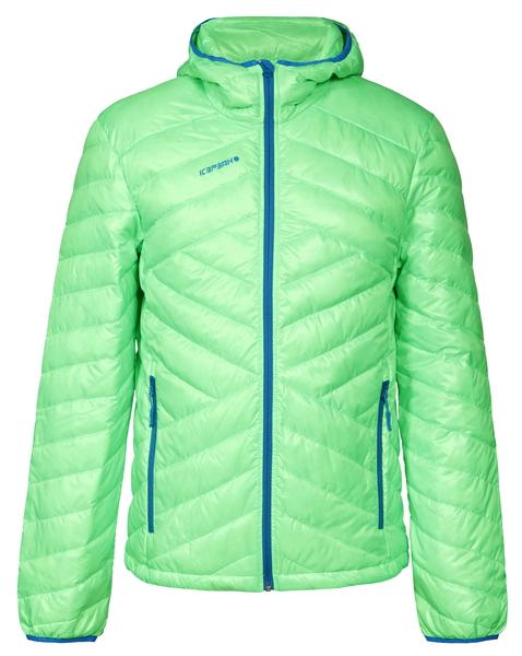Куртка демисезонная мужская Icepeak Benton